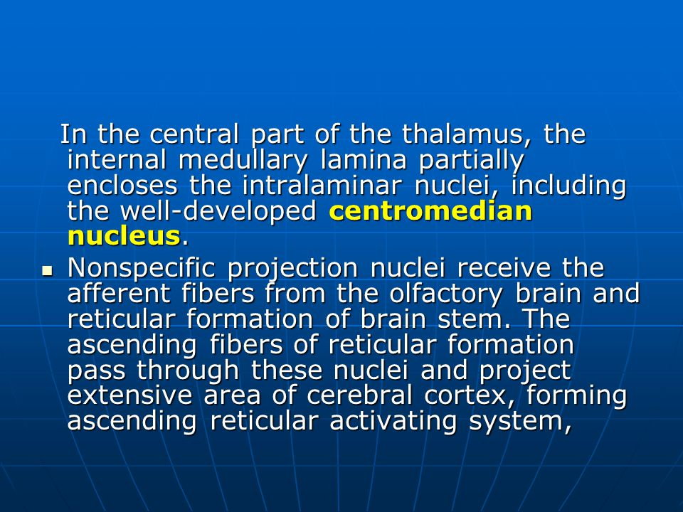 In the central part of the thalamus, the internal medullary lamina partially encloses the intralaminar nuclei, including the well-developed centromedian nucleus.