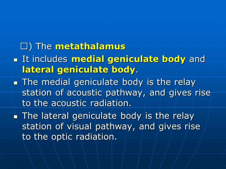 Ⅱ) The metathalamus It includes medial geniculate body and lateral geniculate body.