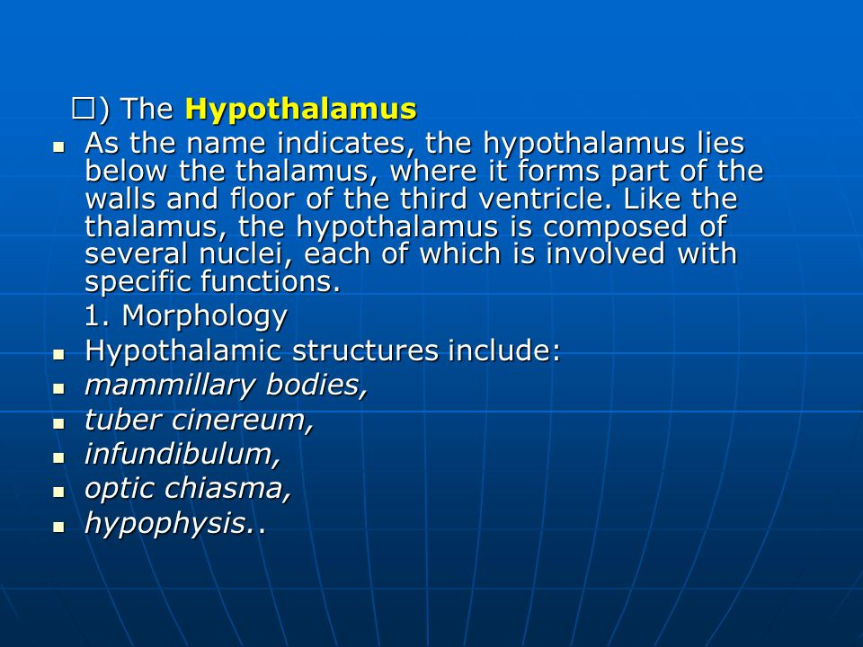 Hypothalamic structures include: mammillary bodies, tuber cinereum,