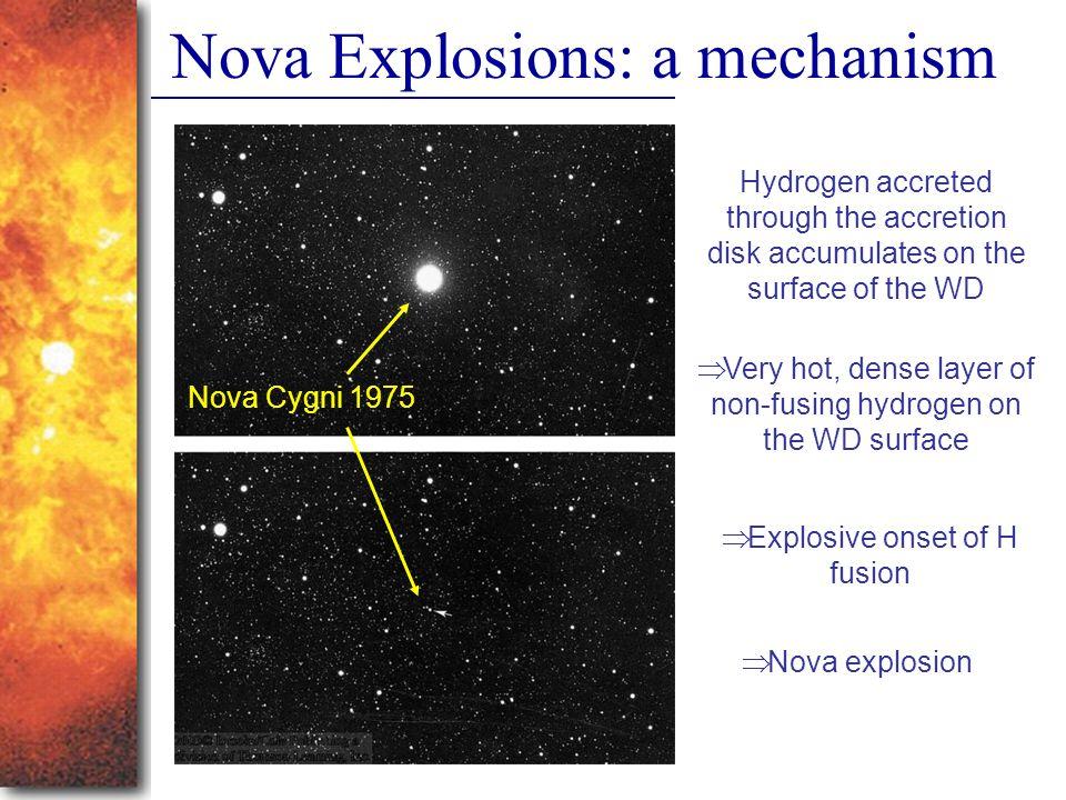 Nova Explosions: a mechanism