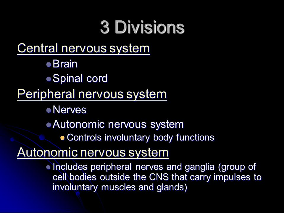 3 Divisions Central nervous system Peripheral nervous system Brain