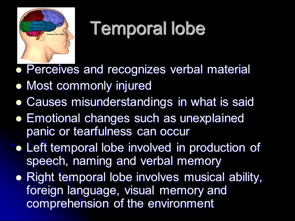 Temporal lobe Perceives and recognizes verbal material