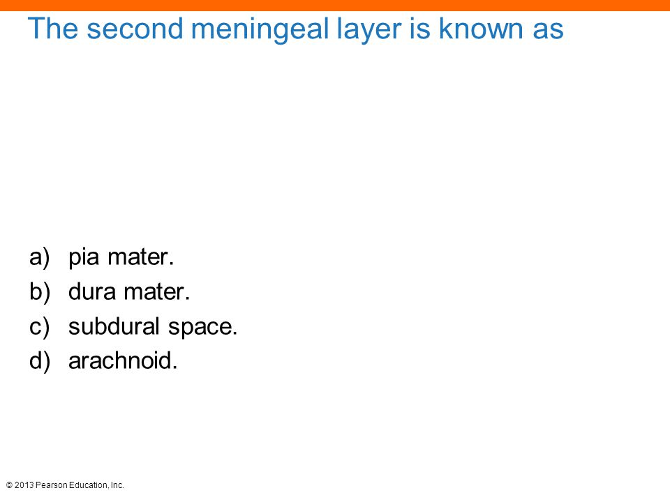 The second meningeal layer is known as