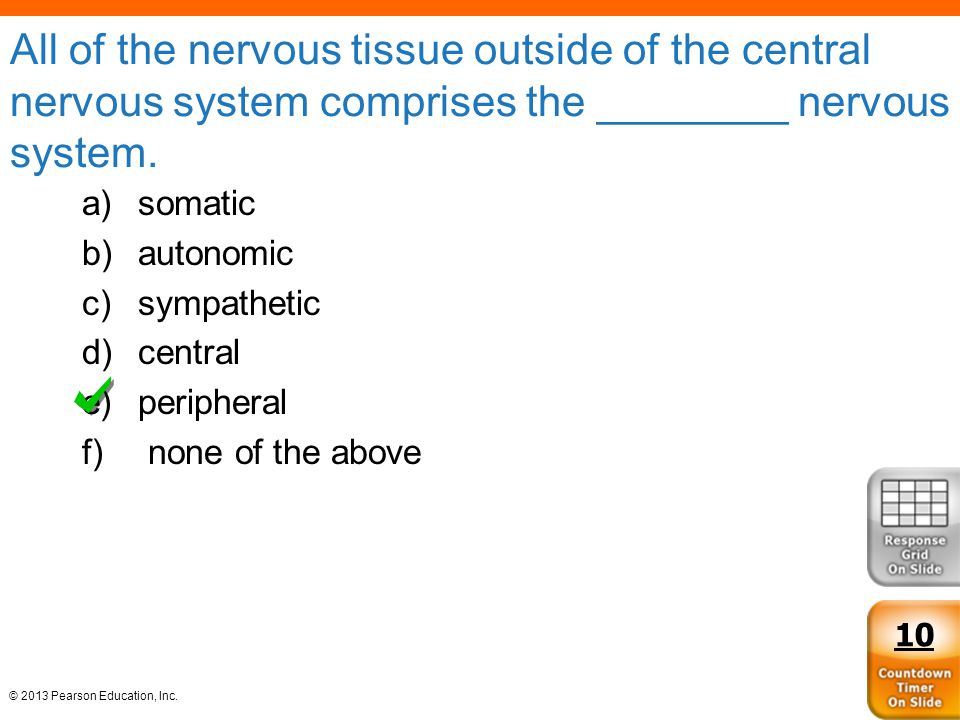All of the nervous tissue outside of the central nervous system comprises the ________ nervous system.