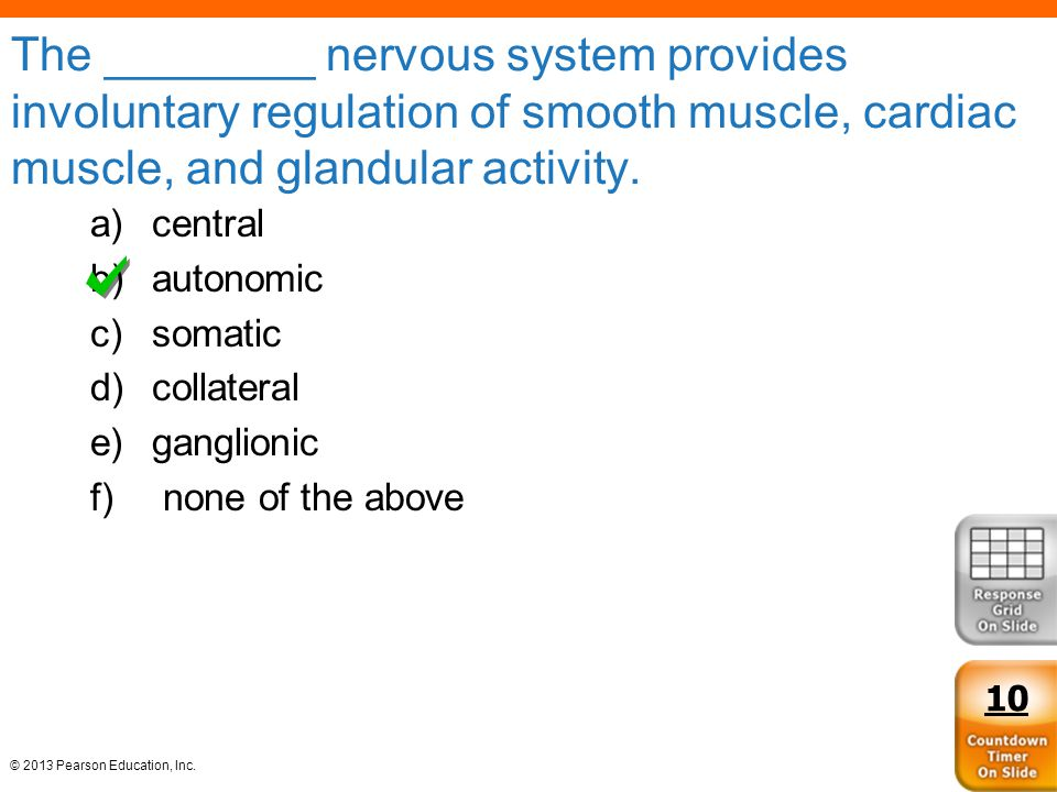The ________ nervous system provides involuntary regulation of smooth muscle, cardiac muscle, and glandular activity.