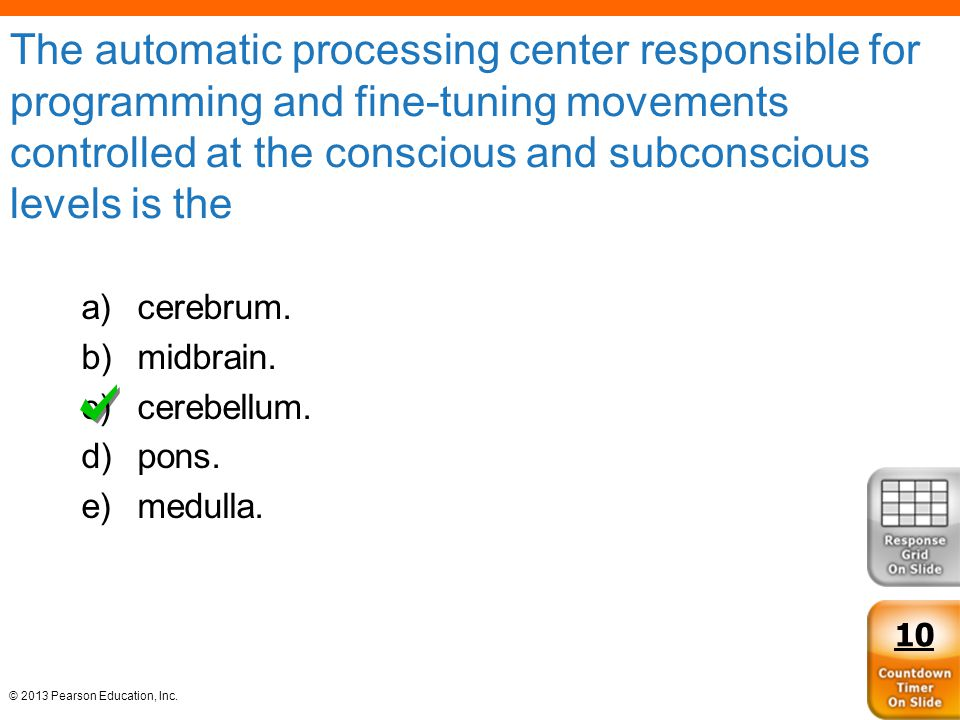 The automatic processing center responsible for programming and fine-tuning movements controlled at the conscious and subconscious levels is the