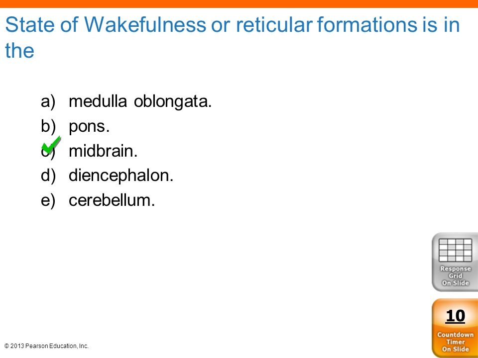State of Wakefulness or reticular formations is in the