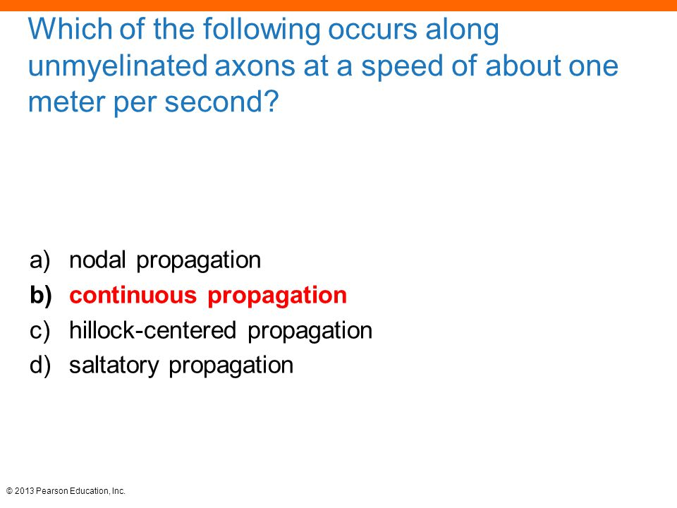 Which of the following occurs along unmyelinated axons at a speed of about one meter per second
