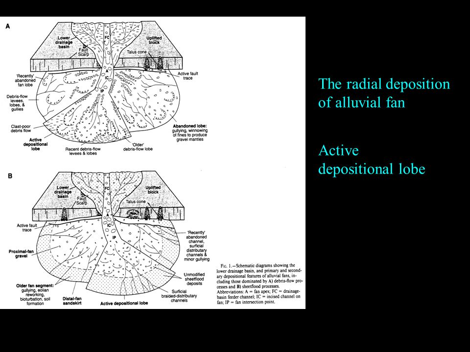 The radial deposition of alluvial fan