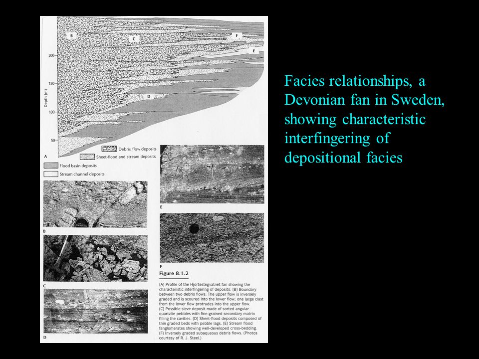 Facies relationships, a Devonian fan in Sweden, showing characteristic interfingering of depositional facies