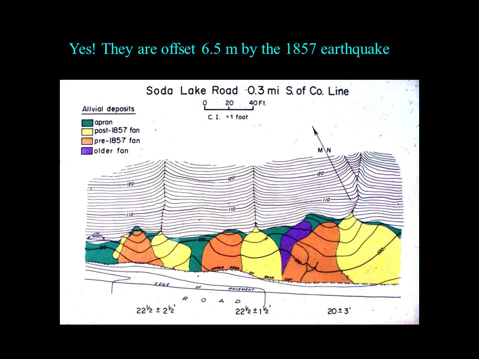 Yes! They are offset 6.5 m by the 1857 earthquake