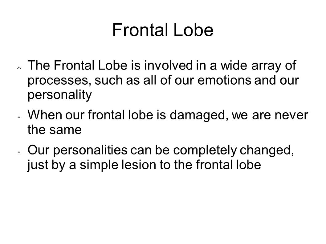 Frontal Lobe The Frontal Lobe is involved in a wide array of processes, such as all of our emotions and our personality.