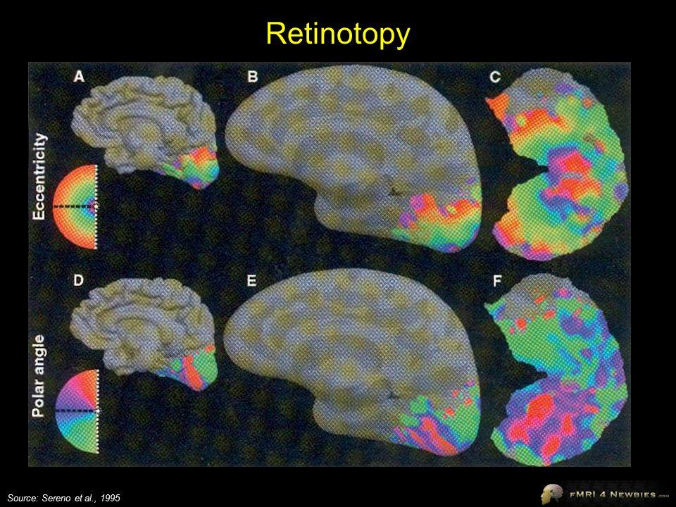 Retinotopy Source: Sereno et al., 1995