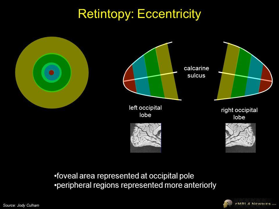 Retintopy: Eccentricity