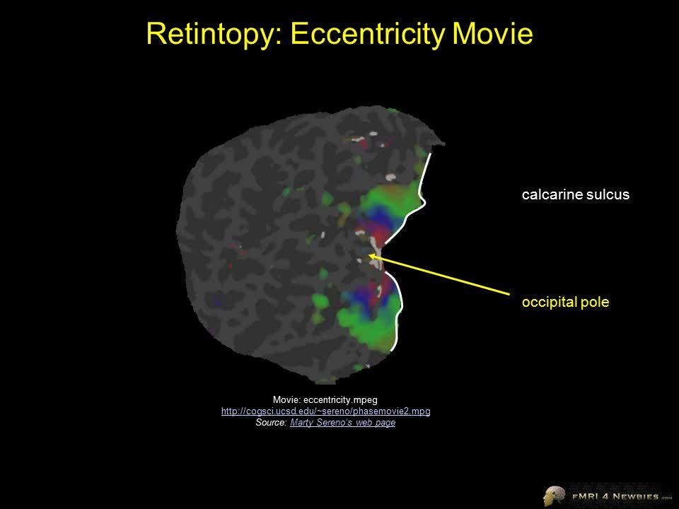 Retintopy: Eccentricity Movie