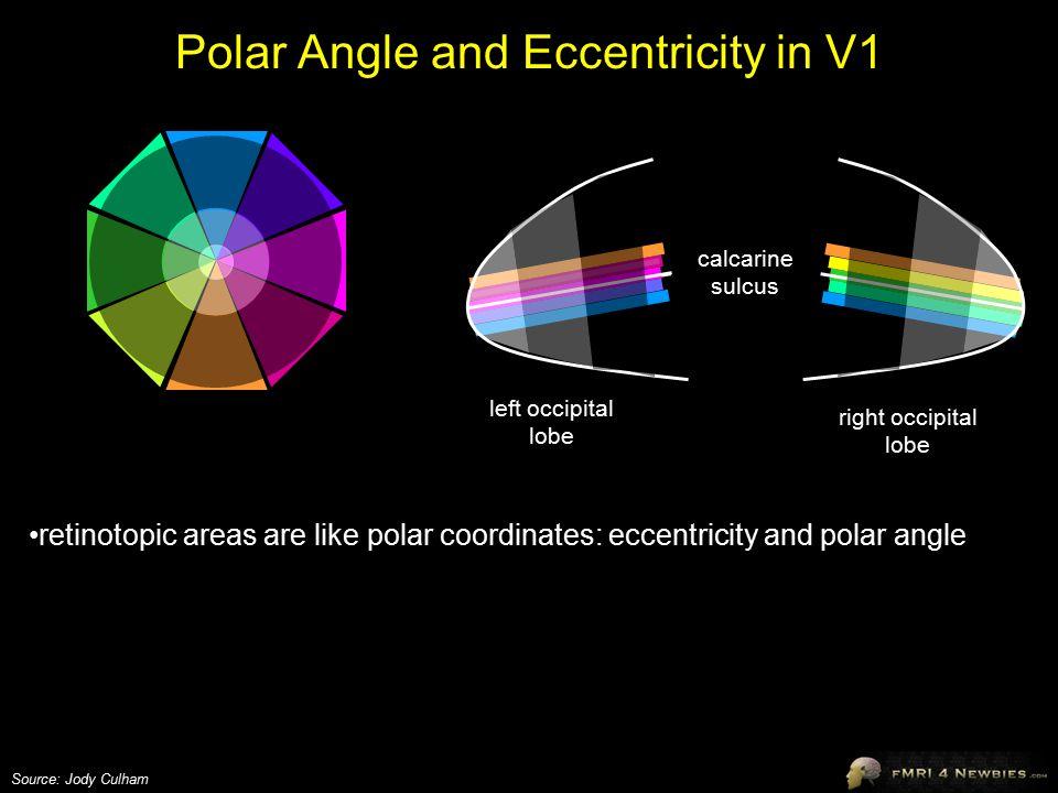 Polar Angle and Eccentricity in V1