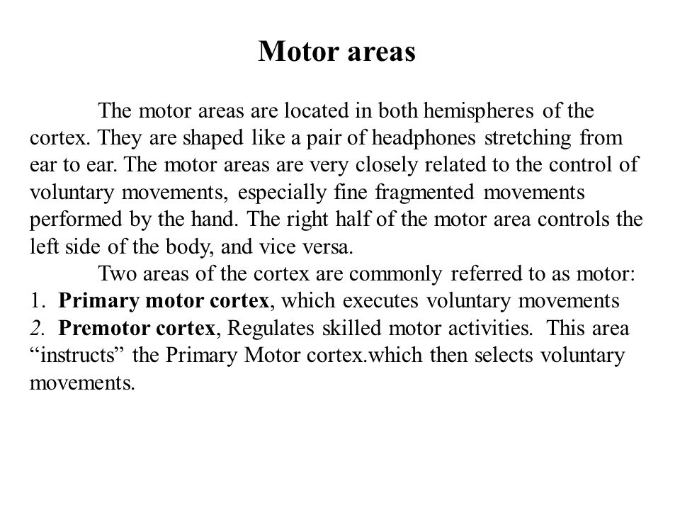 Motor areas