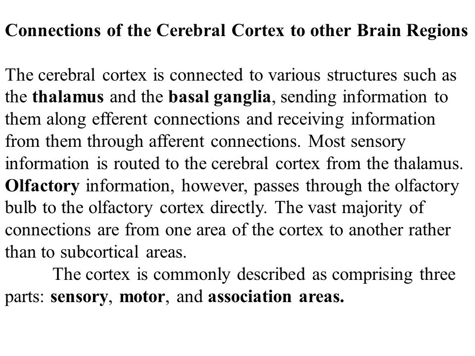 Connections of the Cerebral Cortex to other Brain Regions
