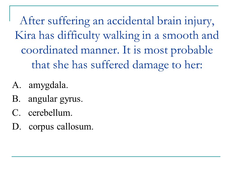 After suffering an accidental brain injury, Kira has difficulty walking in a smooth and coordinated manner. It is most probable that she has suffered damage to her:
