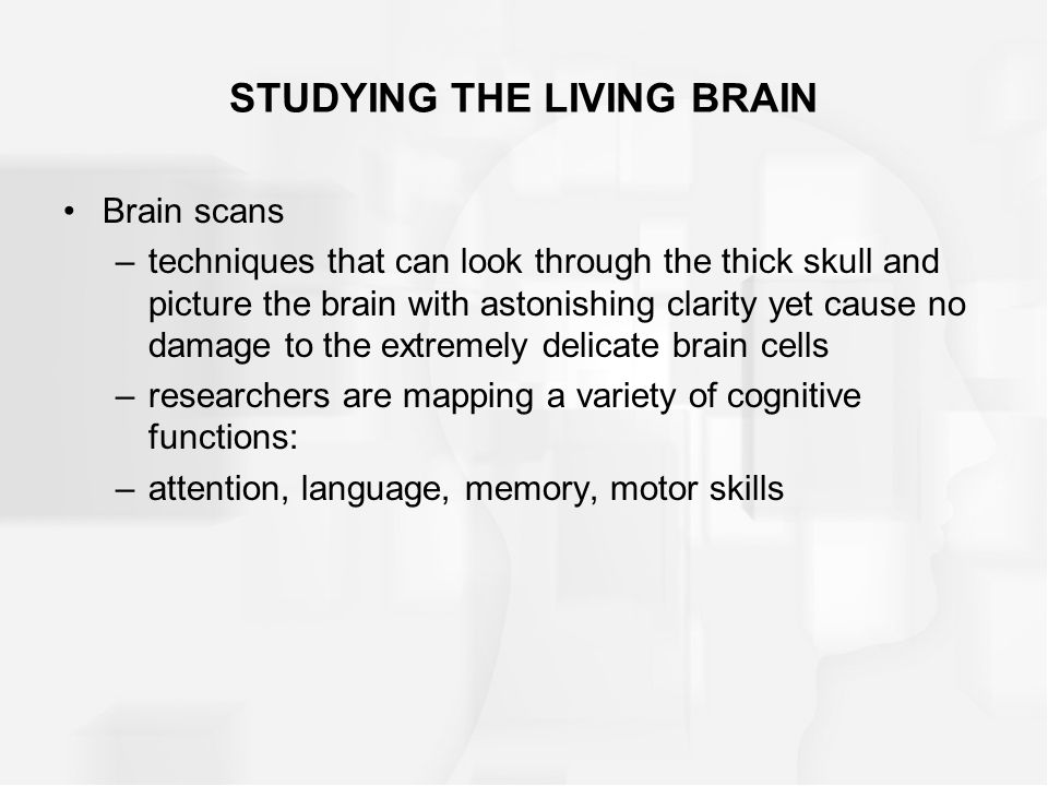 STUDYING THE LIVING BRAIN