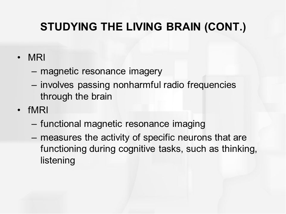 STUDYING THE LIVING BRAIN (CONT.)
