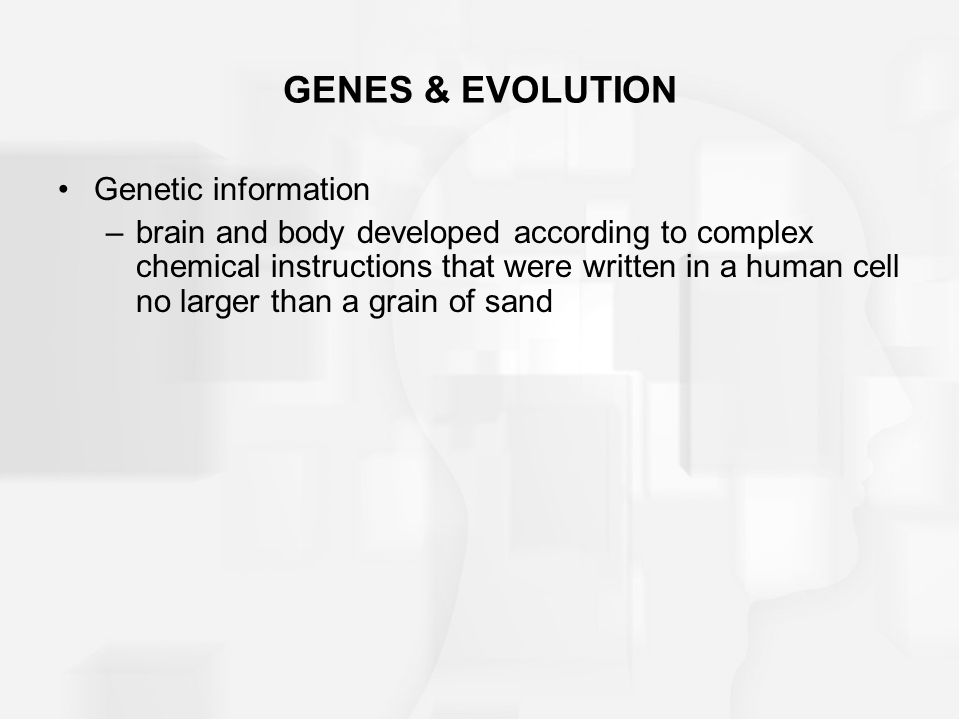 GENES & EVOLUTION Genetic information