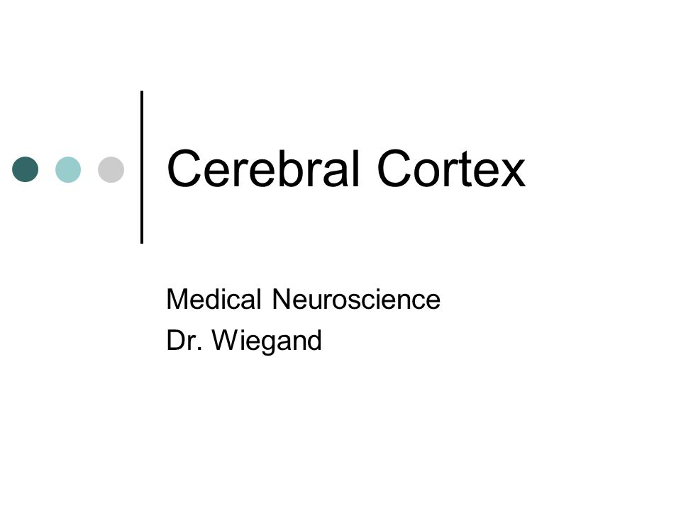 Medical Neuroscience Dr. Wiegand