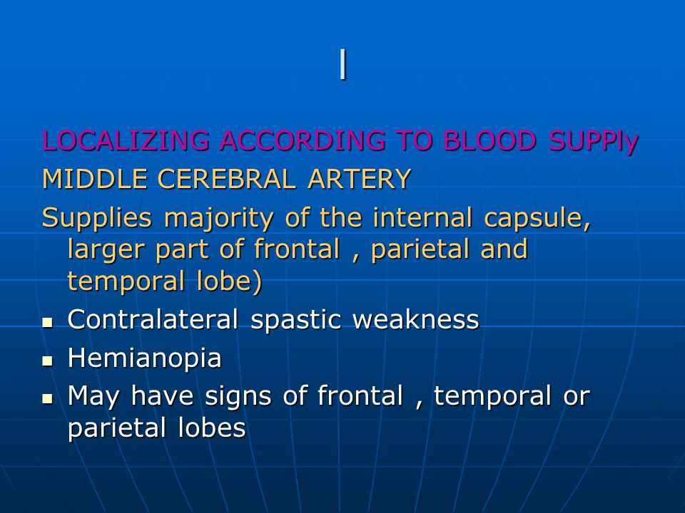 l LOCALIZING ACCORDING TO BLOOD SUPPly MIDDLE CEREBRAL ARTERY