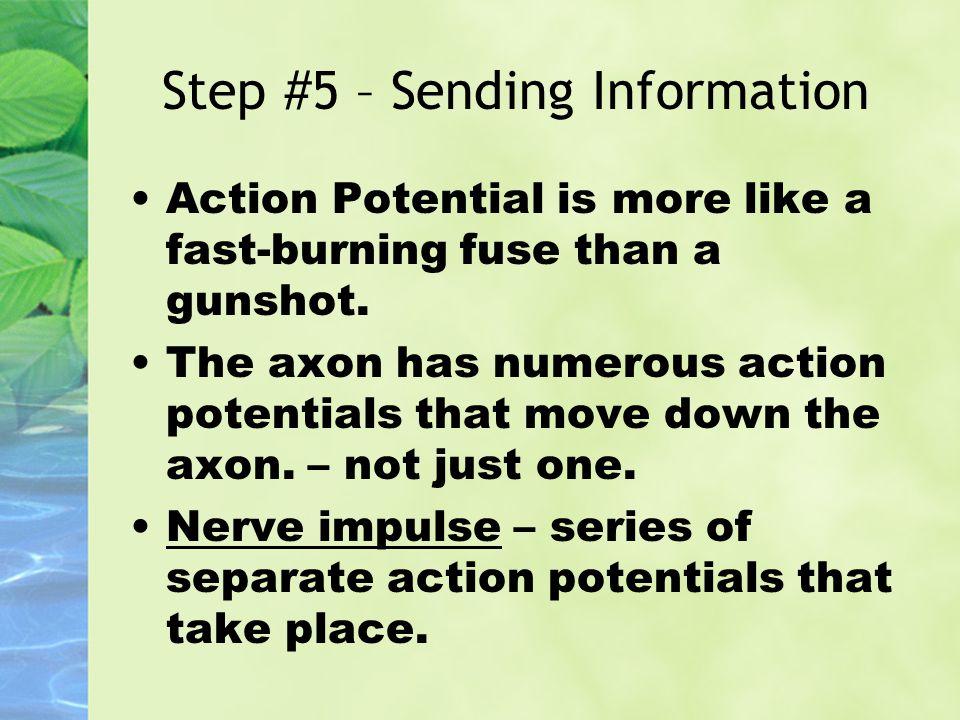 Step #5 – Sending Information