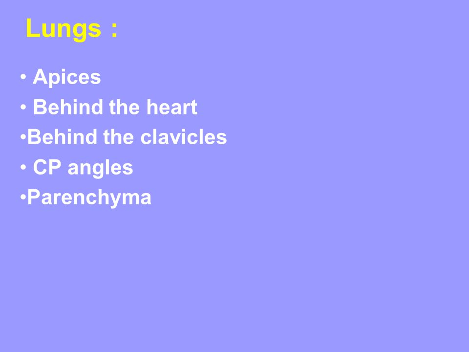 Apices Behind the heart Behind the clavicles CP angles Parenchyma