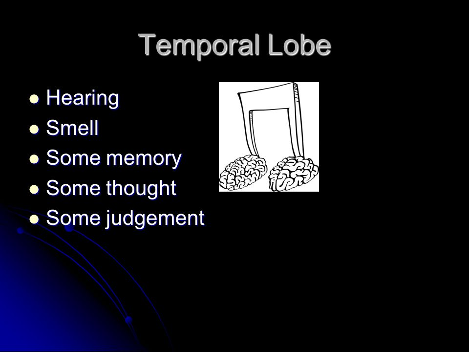 Temporal Lobe Hearing Smell Some memory Some thought Some judgement
