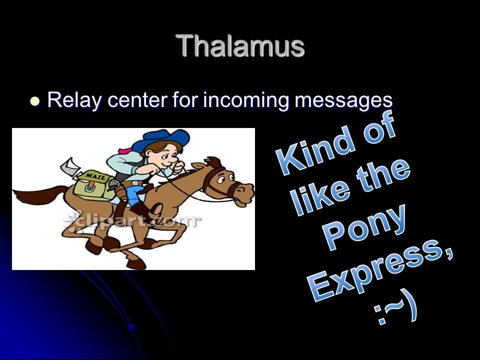 Kind of like the Pony Express, :~)
