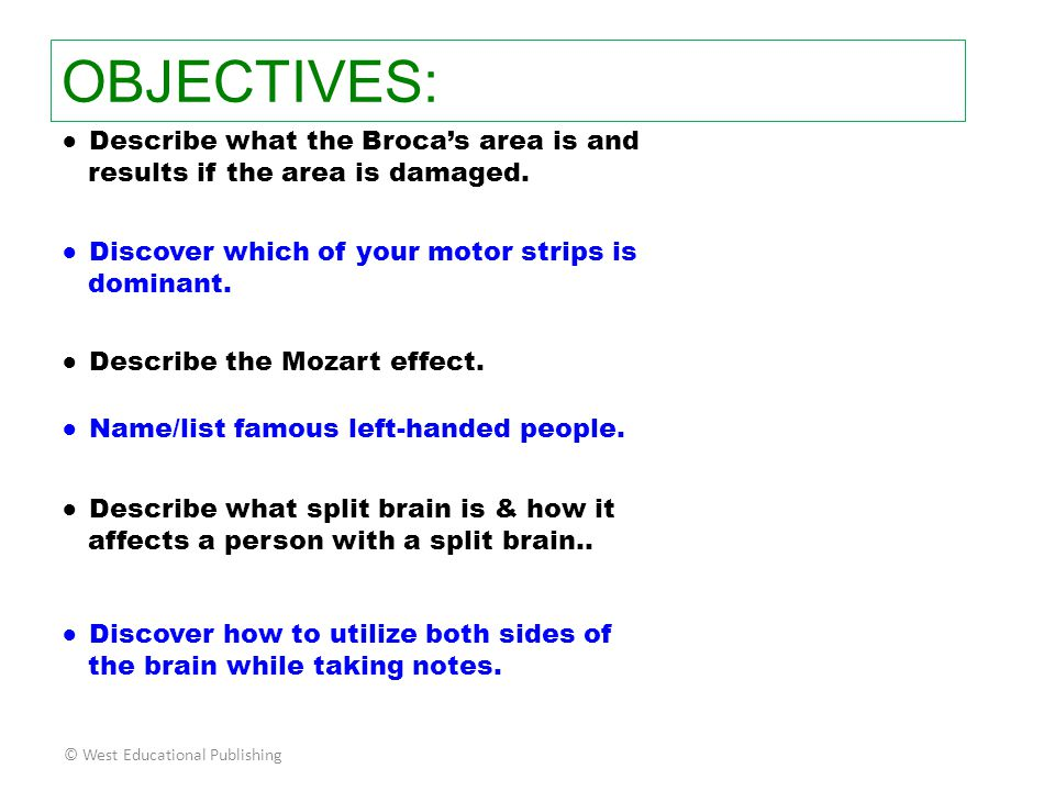 OBJECTIVES: ● Describe what the Broca's area is and