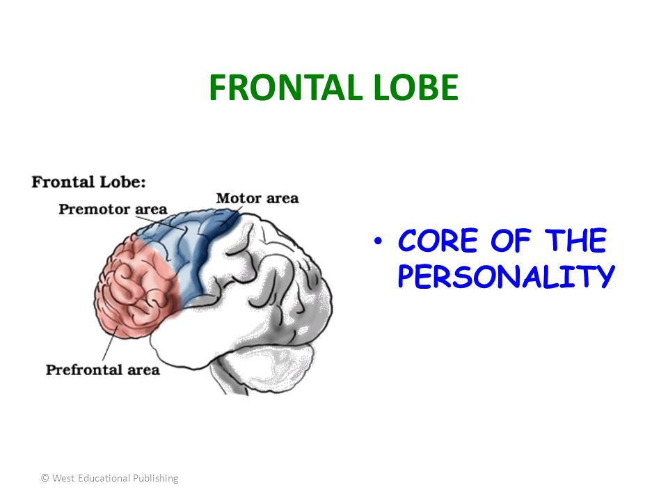 FRONTAL LOBE CORE OF THE PERSONALITY © West Educational Publishing