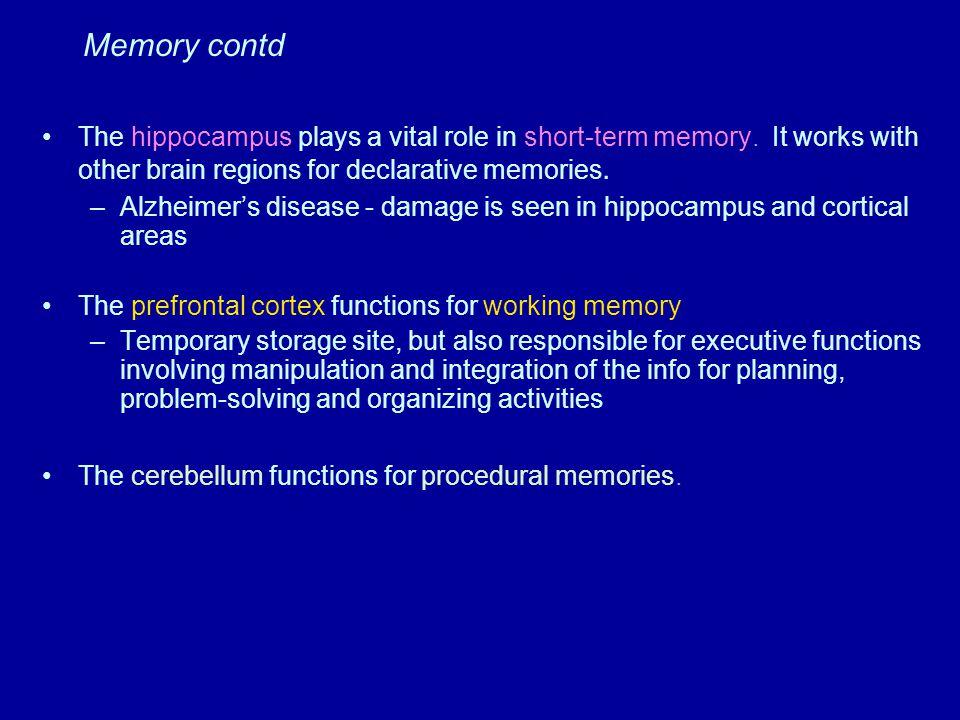 Limbic System Highest. Level. Need. Associative Cortex. Plan. Middle. Level. Cerebellum. Motor Cortex.
