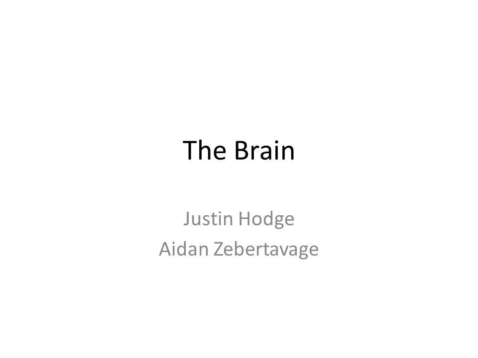 Justin Hodge Aidan Zebertavage