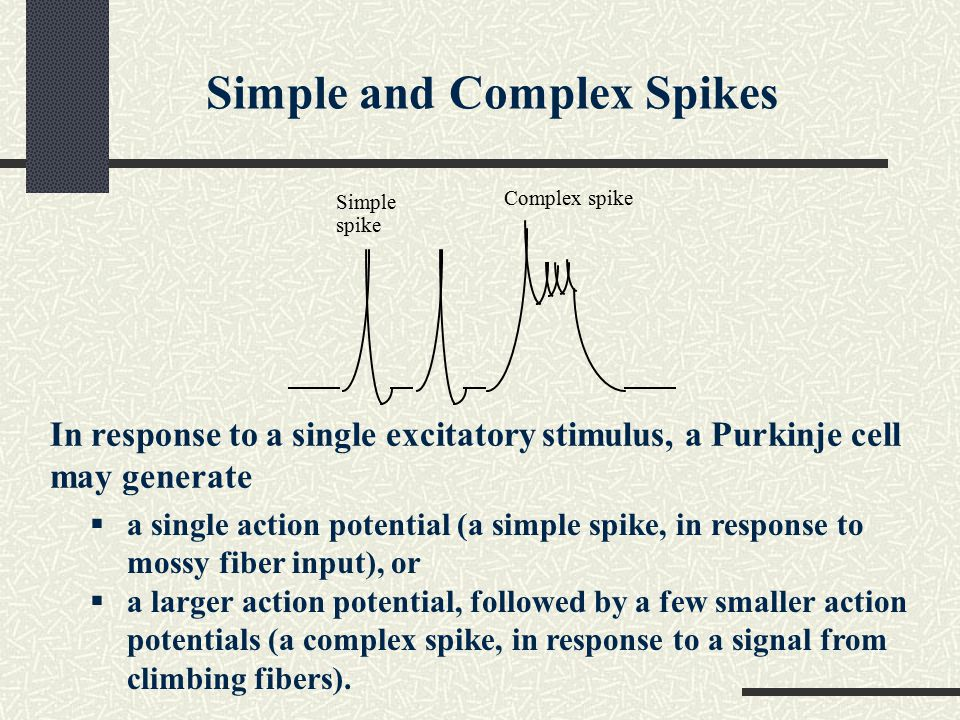 Simple and Complex Spikes