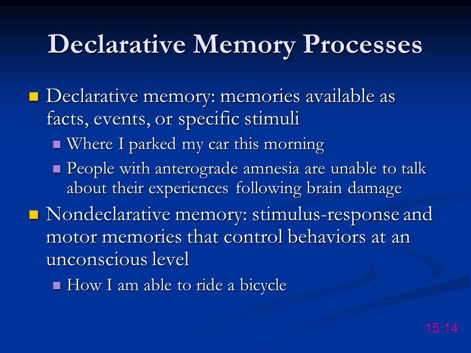 Declarative Memory Processes