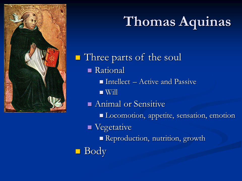Thomas Aquinas Three parts of the soul Body Rational