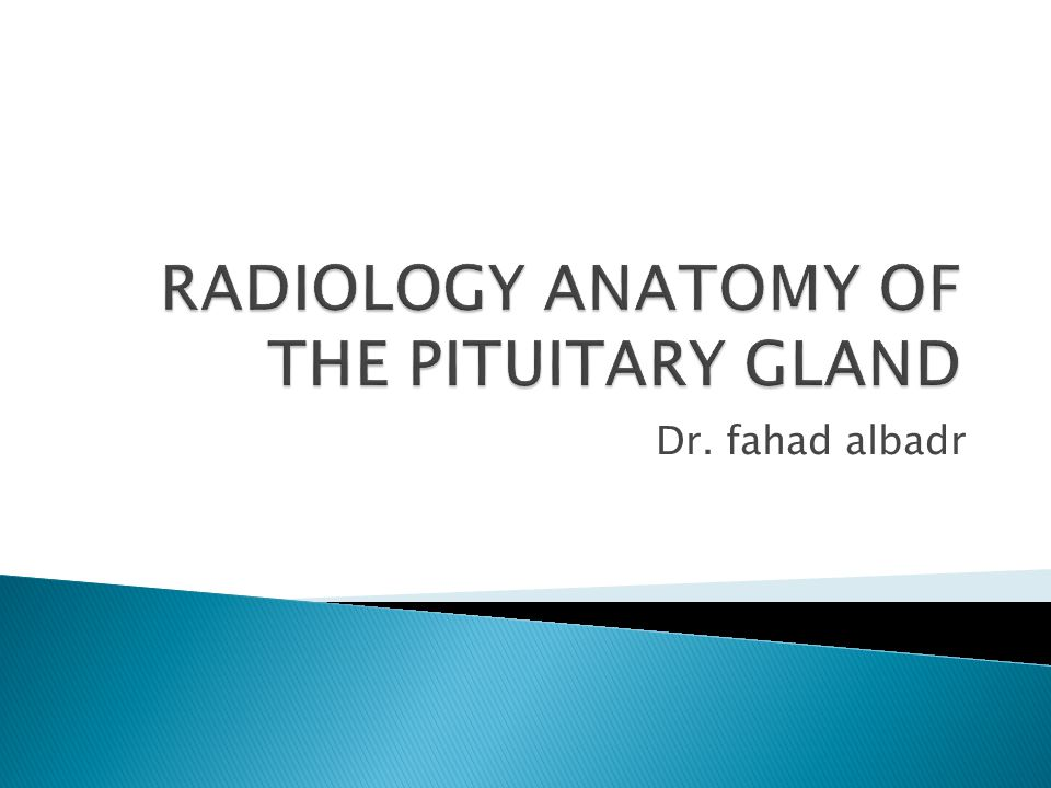 RADIOLOGY ANATOMY OF THE PITUITARY GLAND