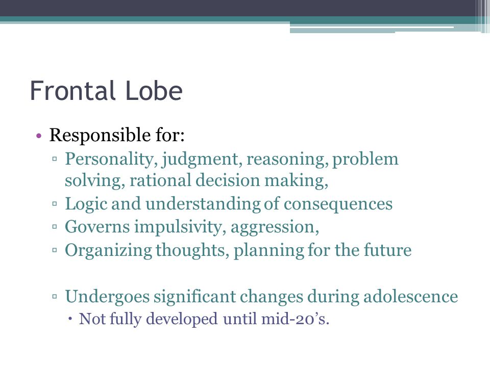 Frontal Lobe Responsible for: