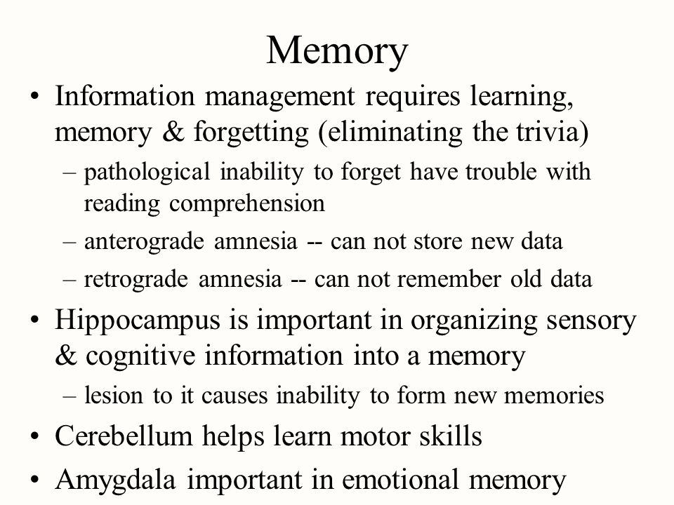 Memory Information management requires learning, memory & forgetting (eliminating the trivia)