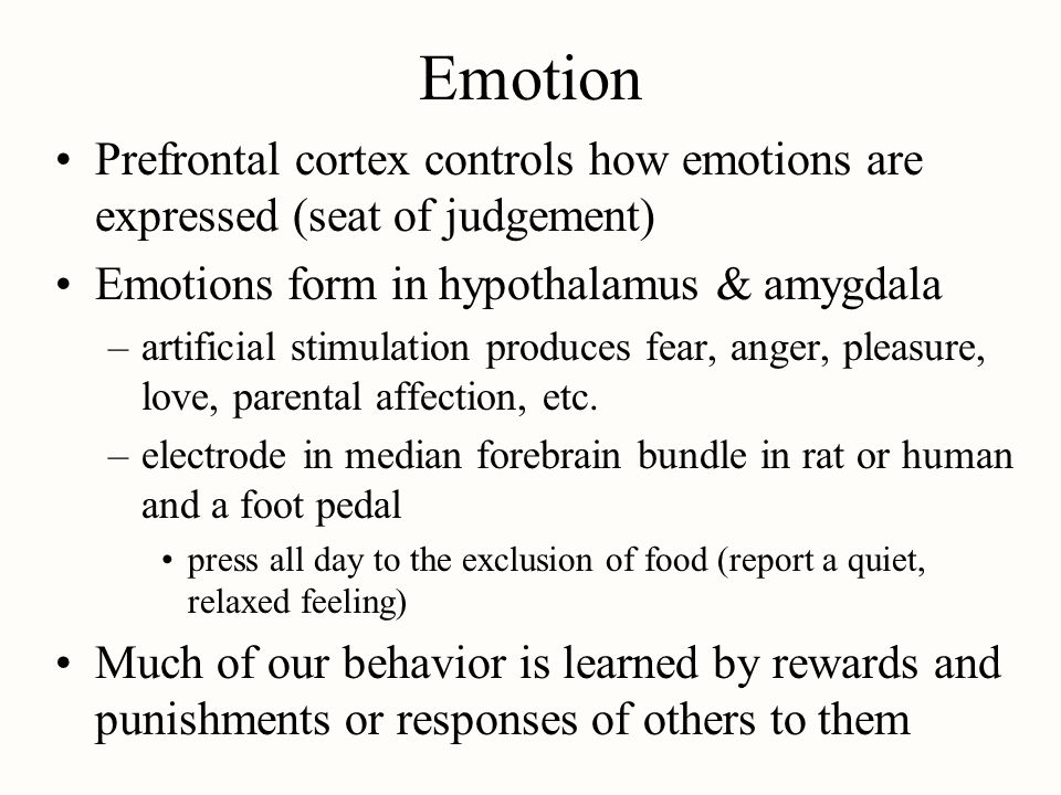 Emotion Prefrontal cortex controls how emotions are expressed (seat of judgement) Emotions form in hypothalamus & amygdala.