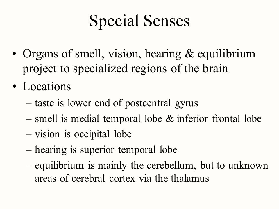 Special Senses Organs of smell, vision, hearing & equilibrium project to specialized regions of the brain.