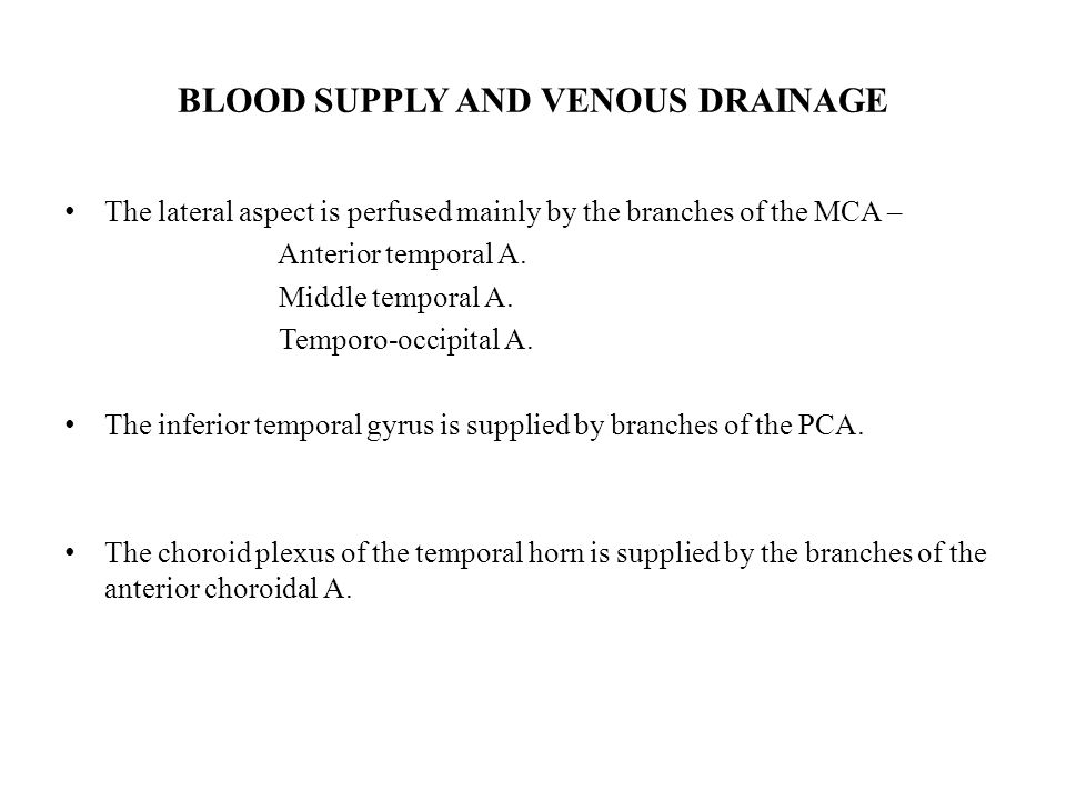 BLOOD SUPPLY AND VENOUS DRAINAGE
