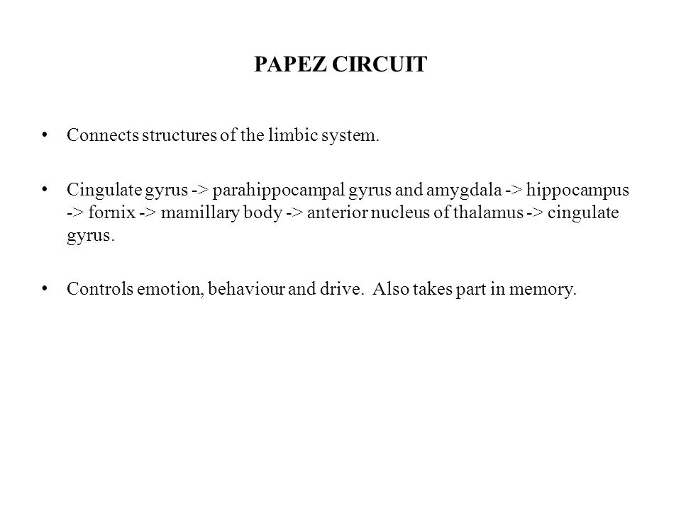 PAPEZ CIRCUIT Connects structures of the limbic system.