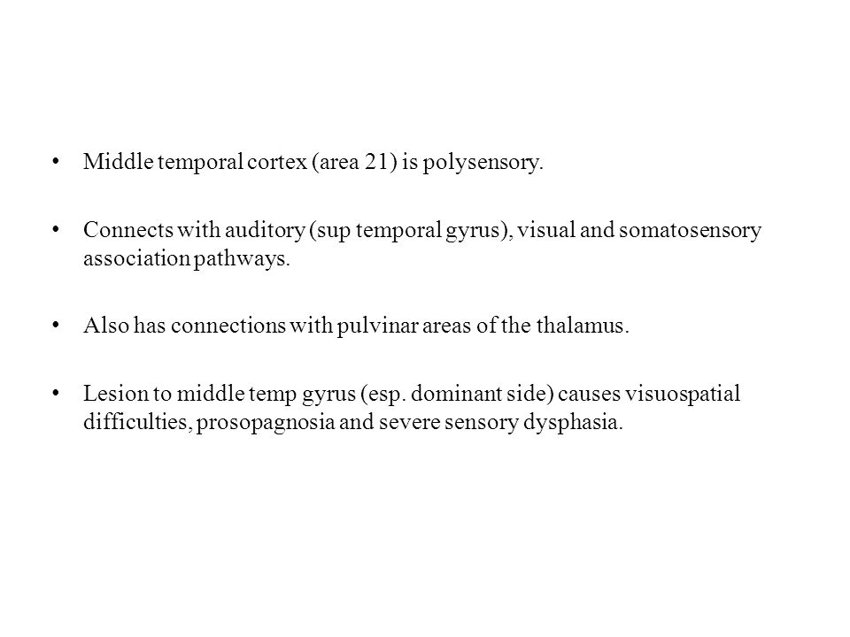 Middle temporal cortex (area 21) is polysensory.