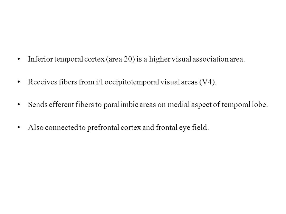 Inferior temporal cortex (area 20) is a higher visual association area.