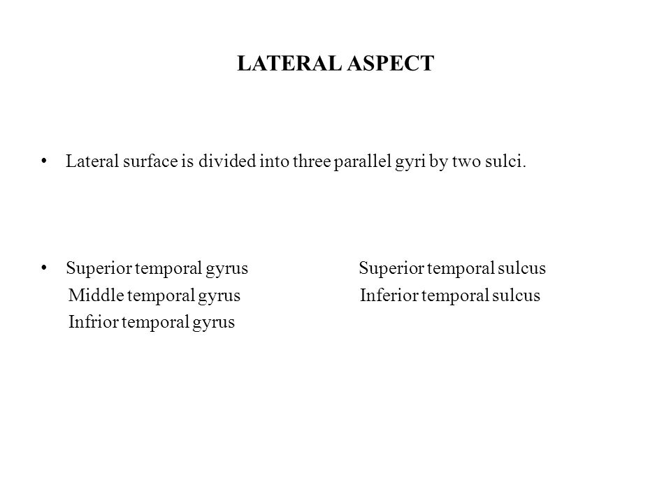LATERAL ASPECT Lateral surface is divided into three parallel gyri by two sulci.