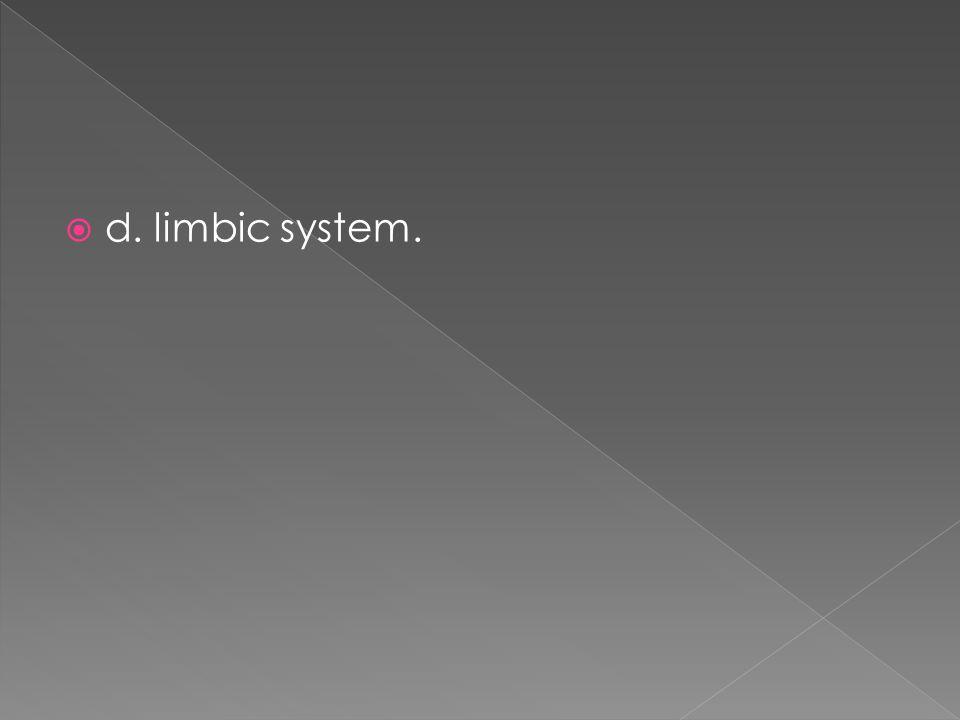 d. limbic system.